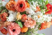 Flowers. Oh so many pretty flowers... / by Jeanette Griebel