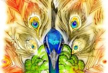 Peacocks ~