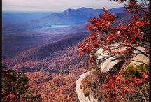 Fall Foliage / The colors of fall across South Carolina's state parks.