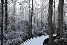 "Winter Wonderland / South Carolina might not get much ""winter"" but when we do, SC State Parks make an especially beautiful backdrop.  / by South Carolina State Parks"
