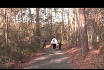 Hiking & Biking / by South Carolina State Parks