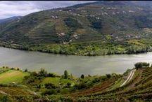 Exploring Portugal / Porto & The Douro Valley