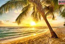 Traumstrände weltweit / Entdecke die Traumstrände dieser Welt mit Bucher Reisen!