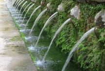 Italian Garden / Topiary-buxus-taxus-cuptessus