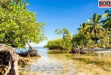 Palmenstrände der Dominikanischen Republik / Ideale Voraussetzungen für einen Bucher Reisen Last Minute Urlaub: Palmenstrände soweit das Auge reicht!