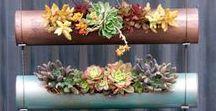 Tuindecoratie / Alles wat leuk is voor de tuin.. liefst om zelf te maken