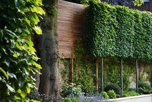 Fence Walls Hedges