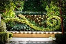 curb appeal / by Susie Fogerty