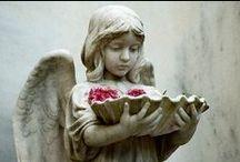 ♥ Angels ♥