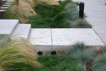 S T O R M  W A T E R  M A N A G E M E N T // L A R / Landscape Architecture