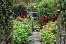 Garden Designs / Beautiful garden designs and ideas! #gardening #landscape