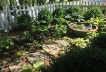 Fun in Cashiers, North Carolina / All about arts and gardening events in Cashiers, North Carolina. Created by Mary Palmer Dargan, from Dovecote Porch & Gardens in Cashiers. Stop by to sit on our front porch and tour our gardens.