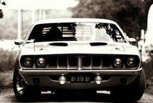 ~ Cars ~