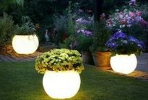 Seasonal Outdoor Ideas