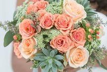 Wedding Color - Coral