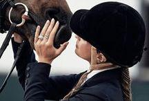 Horse / Horse, horse lover, horse addict