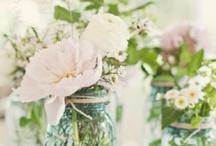 Flowering beauties