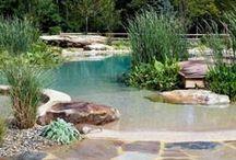 Outdoor- gardens & pools