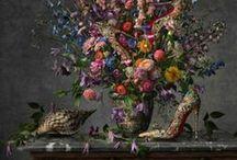 fashion ad / lookbook / cover