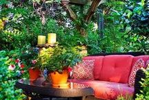 Indoor Planting & Conservatory