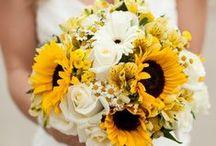 Blumensträuße / Tolle bunte Blumensträuße für den Wohnraum und jeden Anlass