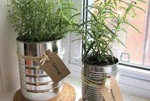 Vasen und Töpfe / Inspiration und DIY-Ideen für Vasen und Töpfe