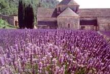 Beautiful South of France / Beautiful South of France