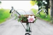 Flowers are Better on Bikes / Bicycles look great on their own, but put some flowers in the basket and they become true works of art! / by Schwinn Bicycles