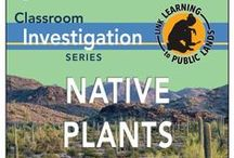 Native Plants Books / A classroom investigation series on native plants. / by Bureau of Land Management