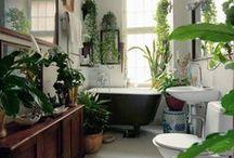 bathrooms / by Tabata Pieri