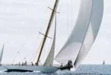 Sail & Boats ⛵