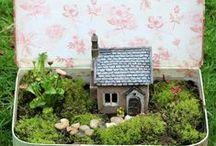 . Fairy Garden . / Fairy garden ideas and inspirations.