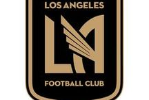 Los Angeles Football Club / The Gold Wings of the City of Angels.