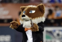 Mascots of MLS / by Major League Soccer