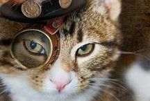 STEAMPUNK / Neo-Victorians, Shaman, and more...!!!