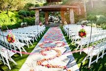 Wedding Aisle/Pathway Decor