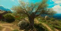 Environment / Trees