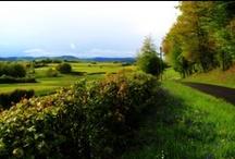 Paysages du Morvan / Bocages, vallées profondes et points de vue, lacs, rivières et cascade, le Morvan regorge de paysages qui, s'ils ne sont pas grandioses pour autant, n'en sont pas moins attachants et touchants... à l'automne les forêts se parent de magnifiques couleurs, allant du brun le plus soutenu au jaune en passant par le rouge et l'orangé..