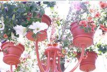 gardening/outdoors / by Donna Bielecki