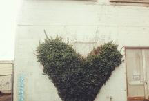 #Eco-friendly ideas