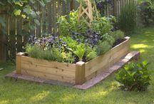 Potagers, potagers gardens / Je les trouve émouvants, souvenirs d'une enfance heureuse