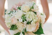 Our Wedding! / by Laurel Koenig