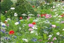 Inspired gardening