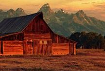 Wyoming / Going to Wyoming Soon! / by Charla Glassford