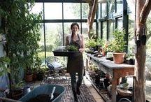 greenhouses, sheds etc.