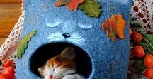 Cat Caves & Beds