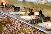 Interiors / Office Spaces