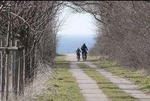 Ahrenshoop / Der Ort Ahrenshoop liegt auf dem bezaubernden, schmalen Landstrich zwischen Bodden und Ostsee. Schon die Künstler der Künstlerkolonie Ahrenshoop wussten die malerisch-reizvolle Landschaft zu schätzen. Ahrenshoop und Umgebung sind ideal für Entdeckungstouren zu Fuß und per Rad.  #Ahrenshoop
