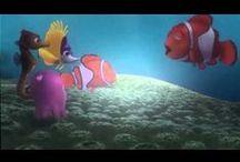vizi állatok
