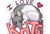 potkani :)